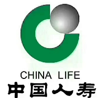 中国人寿保险股份有限公司靖西支公司