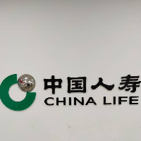 中国人寿保险股份有限公司百色右江支公司
